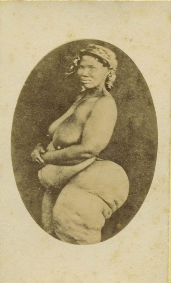 霍屯督妇女,1882年